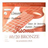 Thumbnail of Fisoma F3022C Consort 80/20 single pair of A strings for mandoline.